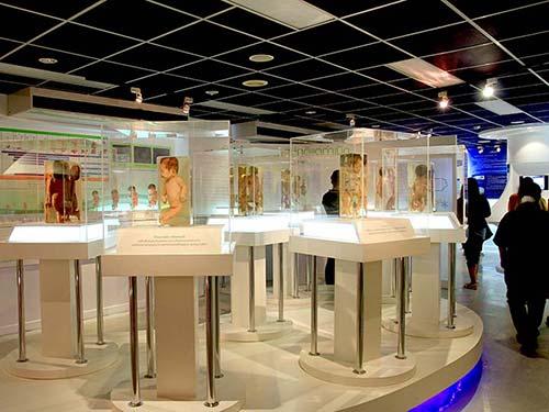 Siriraj museum.
