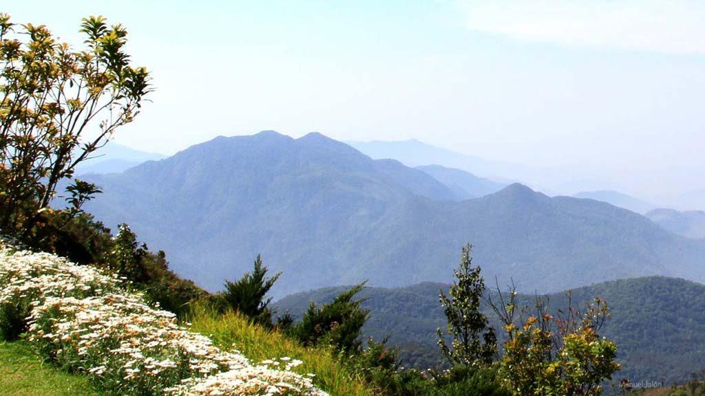 Doi Inthanon National Park.