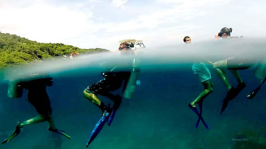 Scuba divers in the sea