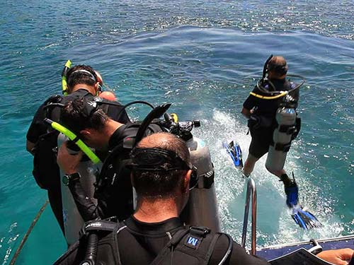 Scuba divers start diving.