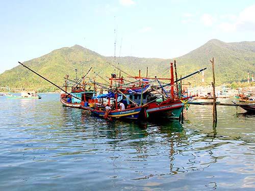 Koh Pha Ngan fishing boats.