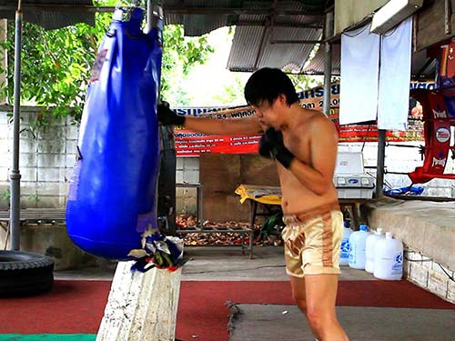 Boxer training in a gym.