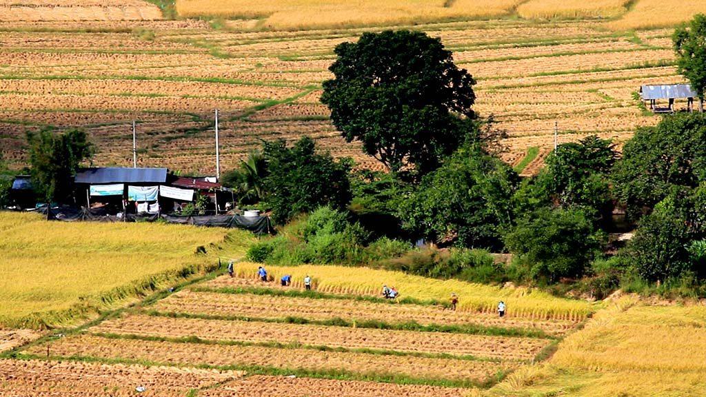 Pai countryside.