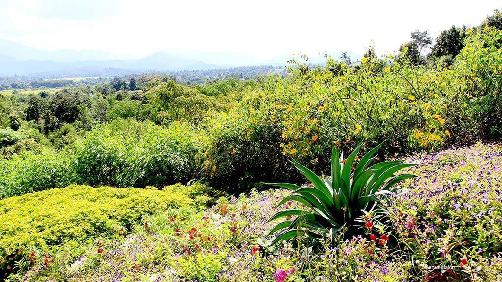 Pai landscape.