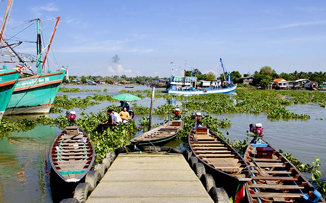 Typical view of the river in Surat Thani.