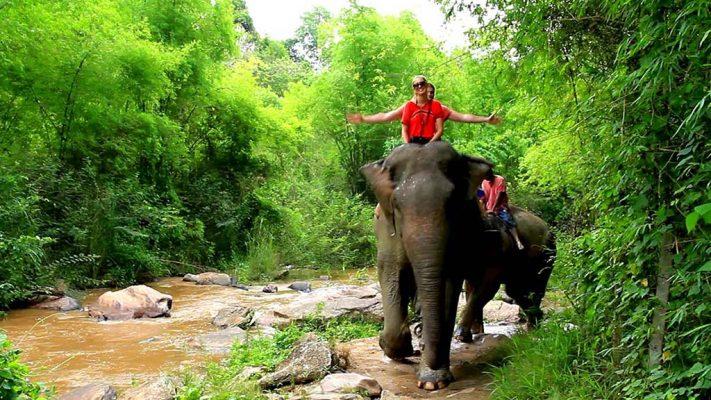Elephant camp.
